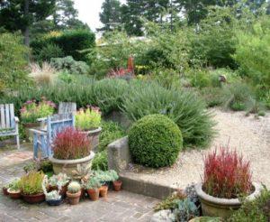 Compost Week Greenest Most Sustainable Garden 2017